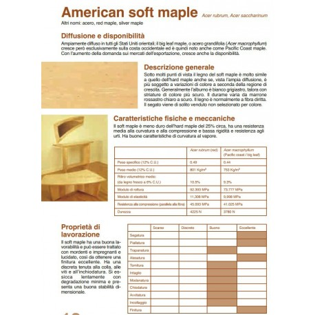 American Soft Maple